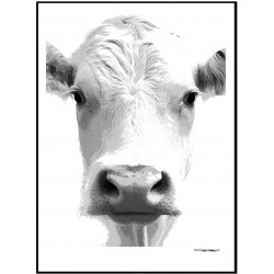 Cow Face Poster