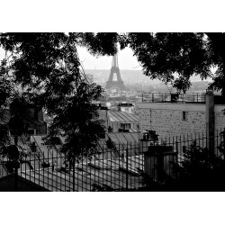 DTP Paris Summer