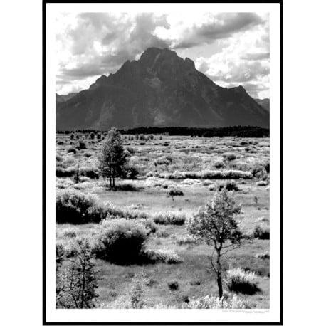 Grand Teton Poster
