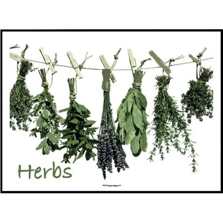 Herbs Cart Poster