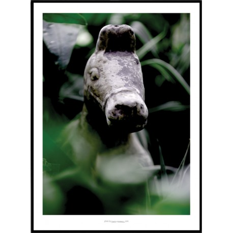 Stone Horse Poster