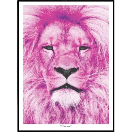 Pink Lion Poster