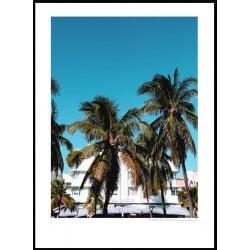 Carlyle Miami