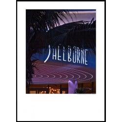 Shelborne Neon