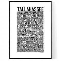 Tallahassee Poster