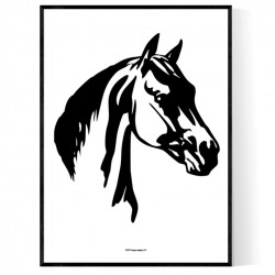 Horse Face Poster