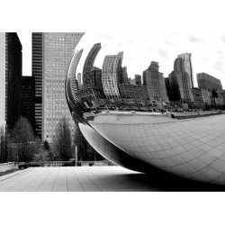 DTP Chicago Bean