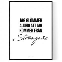 Från Strängnäs