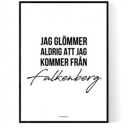 Från Falkenberg