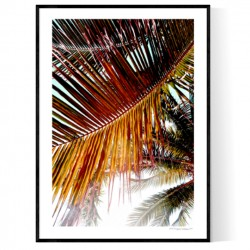 Brickell Palms Poster