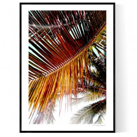 Brickell Palms Poster