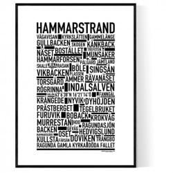 Hammarstrand Poster