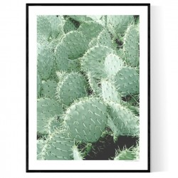 Cactus Poster