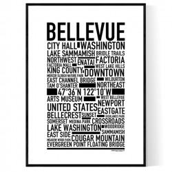 Bellevue WA Poster