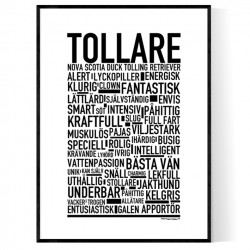 Tollare Poster