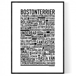 Bostonterrier Poster