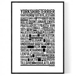 Yorkshireterrier Poster