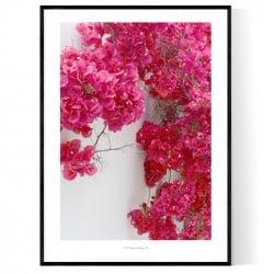 Venice Flower Wall Poster