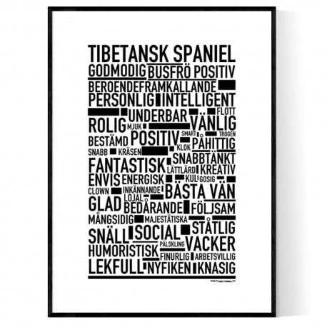 Tibetansk Spaniel Poster