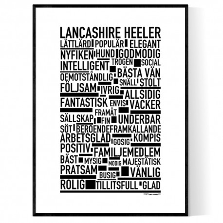 Lancashire Heeler Poster