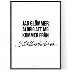 Från Stallarholmen