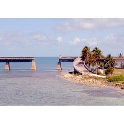 DTP Florida Bridge