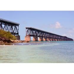 DTP Honda Bridge