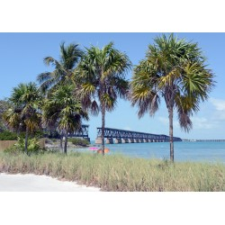 DTP Big Pine Key FL