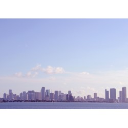 Miami Siluett