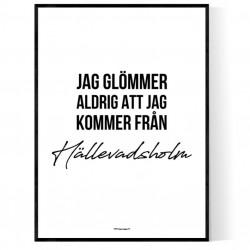 Från Hällevadsholm