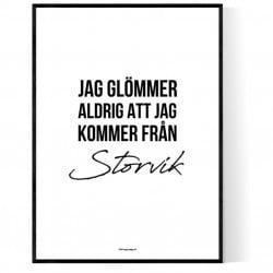 Från Storvik