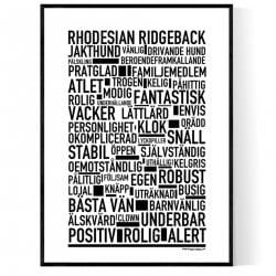 Rhodesian Ridgeback Poster