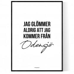 Från Odensjö