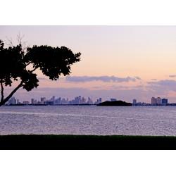 NoBe Miami