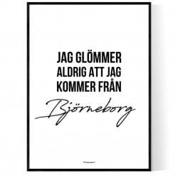 Från Björneborg
