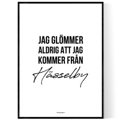 Från Hässelby