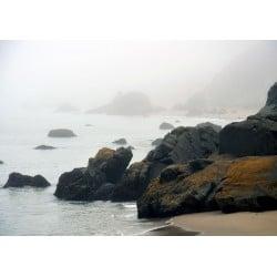 Baker Beach Cliff