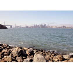SF Star Island