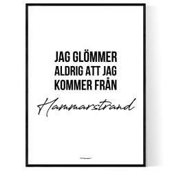 Från Hammarstrand