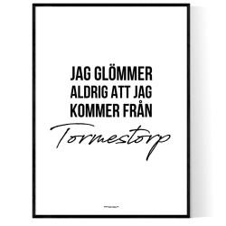 Från Tormestorp