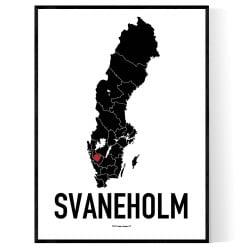 Svaneholm Heart