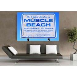 DTP Muscle Beach