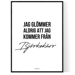 Från Björkekärr