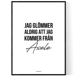 Från Åsele