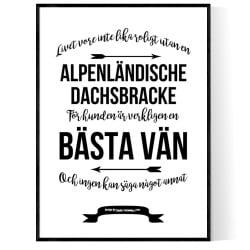 Livet Med Alpenländische Dachsbracke