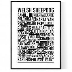 Welsh Sheepdog Poster