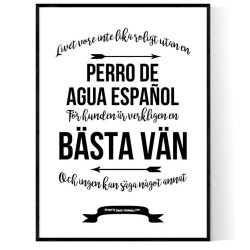 Livet Med Perro de Agua Español