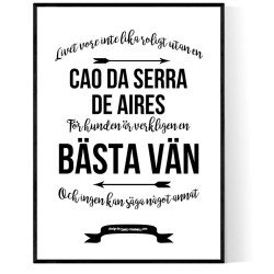 Livet Med Cao da Serra de Aires