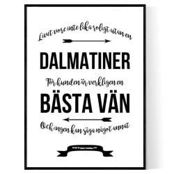 Livet Med Dalmatiner