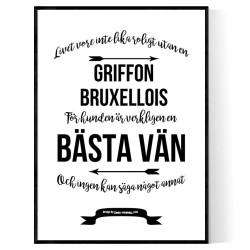 Livet Med Griffon Bruxellois